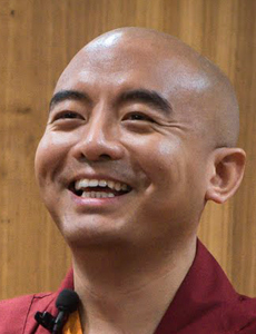 mingyur-rinpoche-jol-rio-230×300