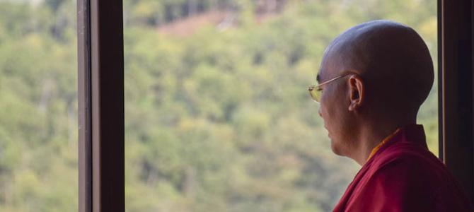 Yongey Mingyur Rinpoche. Photo: Jamyang Choedak