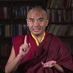 rinpoche2019